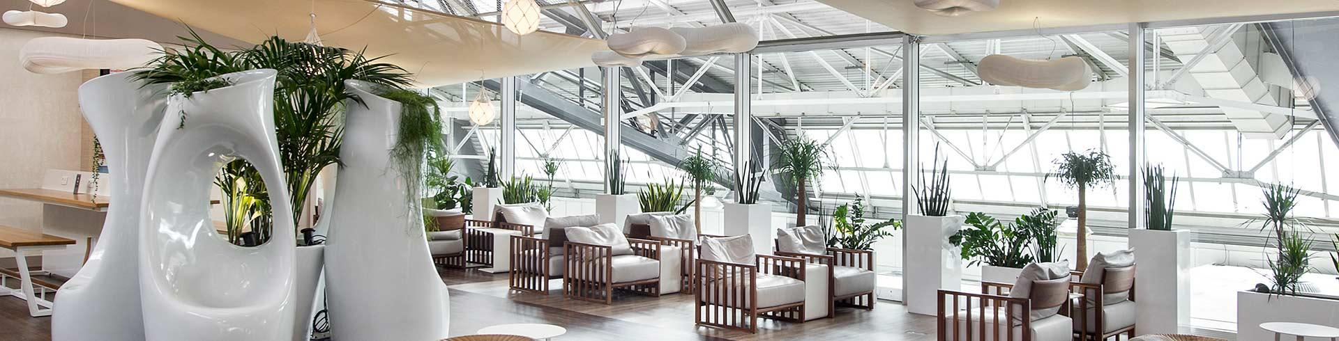 Salon Canopy Terminal 1