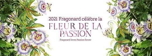 Fragonard Magnolia fleur de l'année 2020